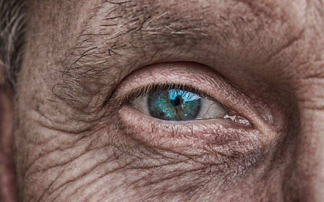 La SEEBV crea un teléfono para personas con baja visión